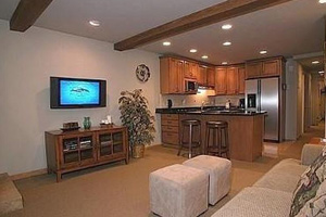aspen by owner rentals